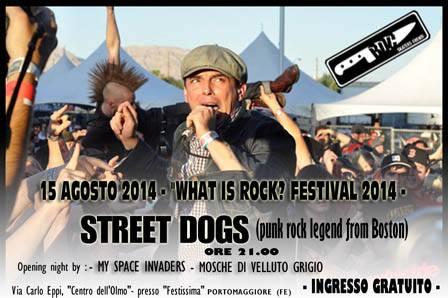 STREET DOGS: unica data italiana a Ferrara per ferragosto
