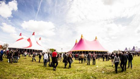 GROEZROCK FESTIVAL, Giorno 1, 1/5/2015, Meerhout (Belgio)