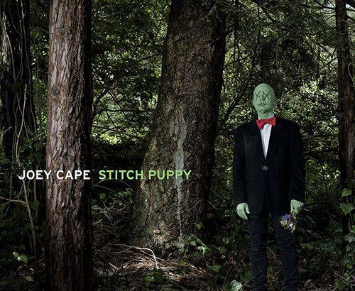 Joey Cape: Stitch Puppy in streaming!