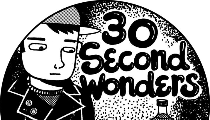 V.A. – 30 SECOND WONDERS [One Chord Wonders]