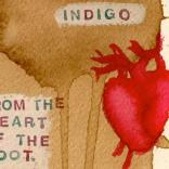 INDIGO: From The Heart Of The Boot