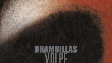 BRAMBILLAS: Volpe