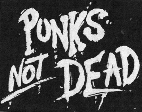 Punk-s-not-dead-punk-rock-14926257-500-396