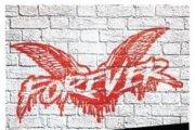 Nuovo album per i Cock Sparrer!