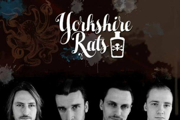 "YORKSHIRE RATS: cover acustica di ""I Got Your Number"" (Cock Sparrer)"
