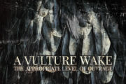 "A VULTURE WAKE: ""The Appropriate Level Of Outrage"" in streaming completo"