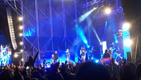 La Raiz (17 novembre 2018 – Valencia/ESP)