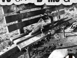 PVC Pistols: Verona di merda